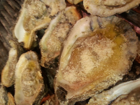 best oysters abbeville la